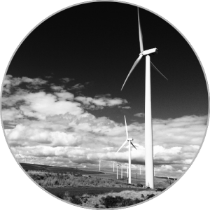 Wind Farm Investigation